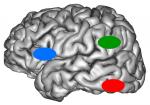 dyslexie zones cerveau