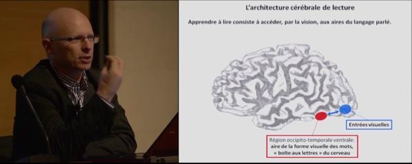 Les neurones de la lecture - vidéo