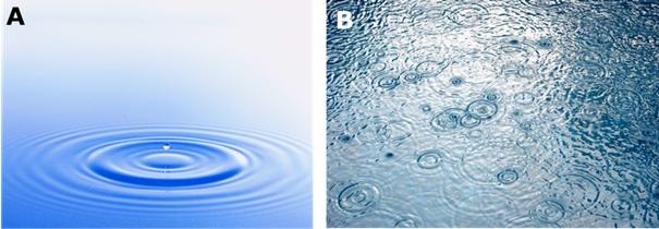 Figure 2 : L'activité cérébrale peut être comparée à des ondes ou des vagues à la surface d'un lac, jamais complètement immobiles et s'affectant les unes les autres.