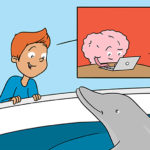 Comment s'aider de nos souvenirs pour apprendre ?
